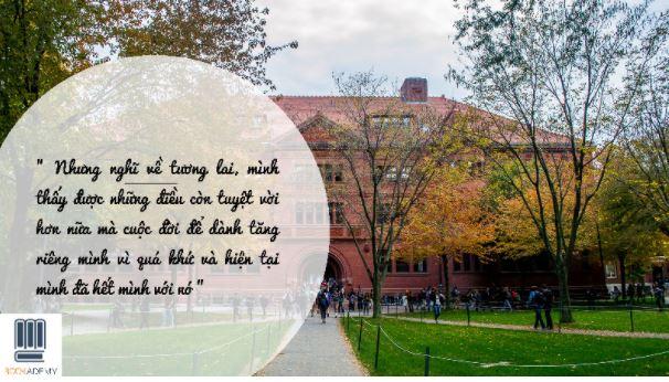 Review sách Nhật Ký 300 Ngày Ở Harvard - Học Để Thay Đổi Thế Giới